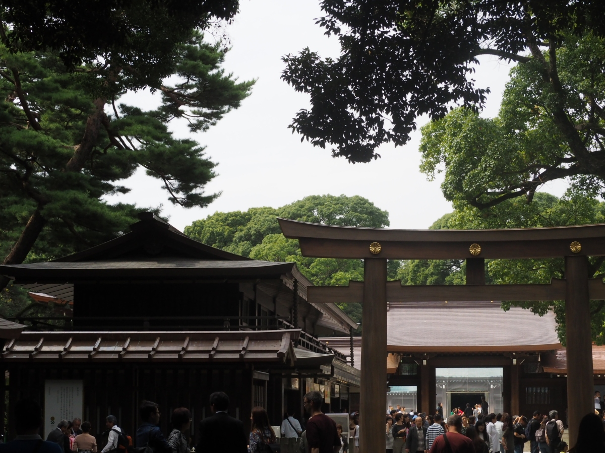 Meiji Shrine: the spiritual path